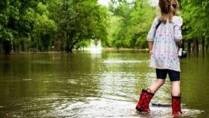 Florida Flood Insurance Near Me